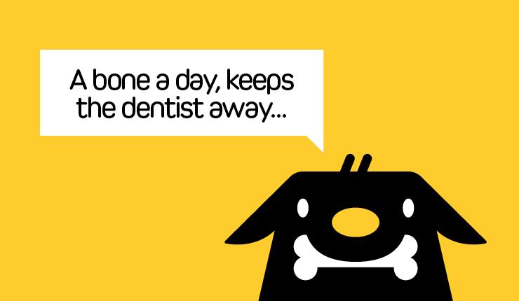 Doggy Dental Care | Petinsurance.com.au
